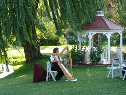 Oman Ken serenading guests with his lovely harp music.