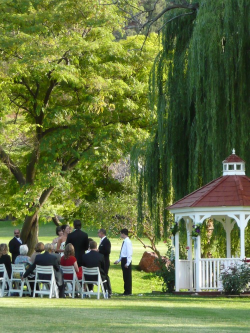 The perfect setting for their intimate wedding ceremony