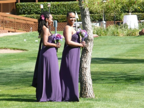 The Bridesmaids Just Prior to the Ceremony