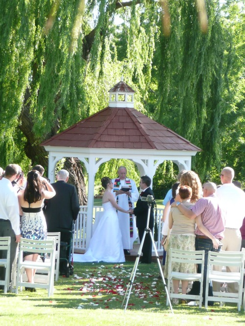 Joy and James at the Gazebo Beneath Our Weeping Willow