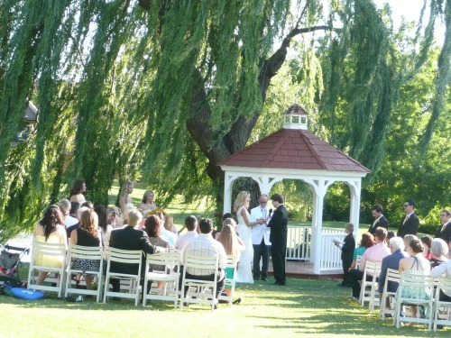 Intimate Wedding Ceremony Beneath the Majestic Weeping Willow