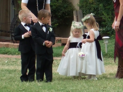 The Adorable Flower Girls and Ring Bearers