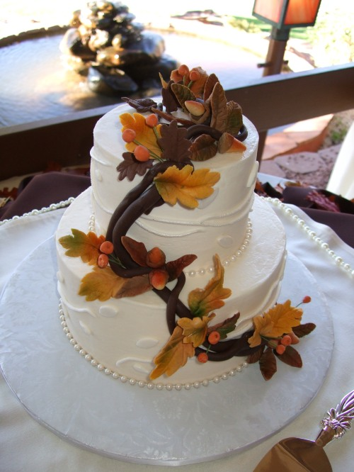 The Amazing Cake Created by Donna Joy, Sedona Sweet Arts