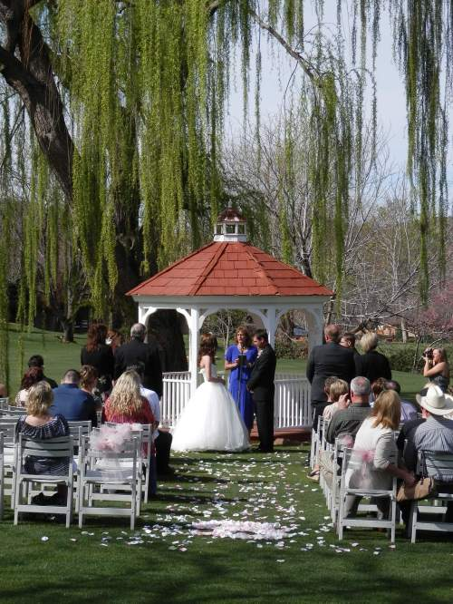 Our majestic weeping willow tree shadows the gazebo