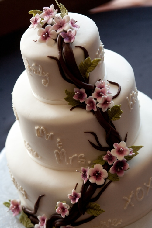 Photo by Tangled Lilac Photography - Cake by Sedona Sweet Arts